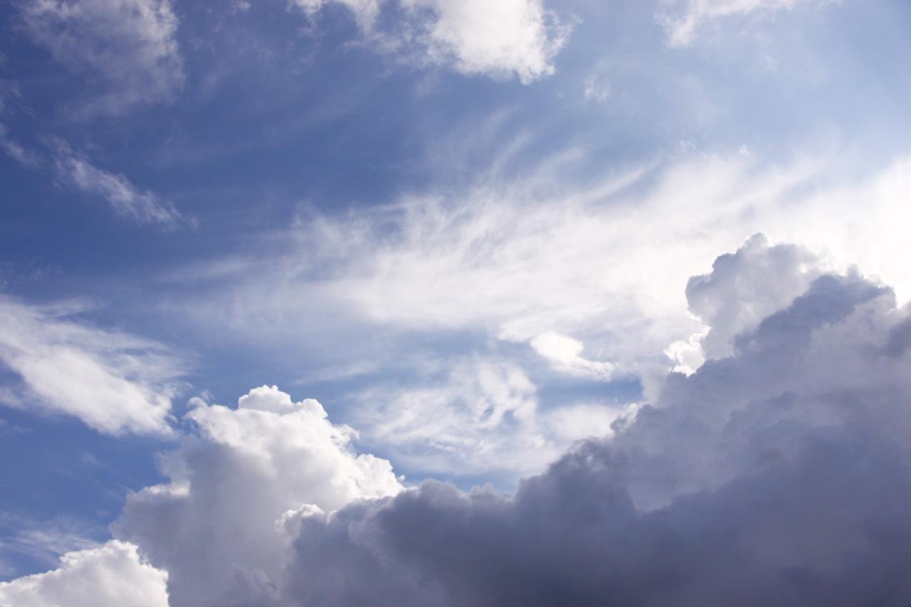 ボーダーコリーそっくりな雲がうかんでいた。