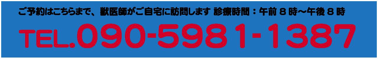09059811387